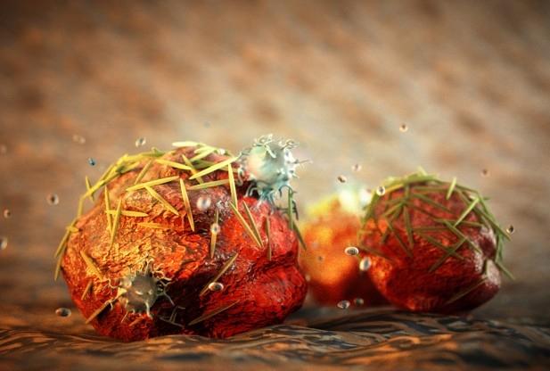 cancer_uand_les_nanoparticules_tiennent_la_forme